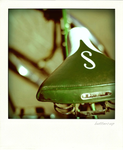 buttercup01